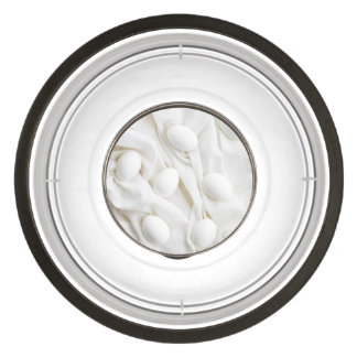 White eggs pet bowl