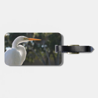 White Egret backlit looking right against trees Bag Tag