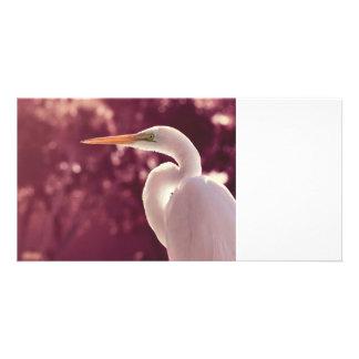 white egret bird on right burgundy tint photo card