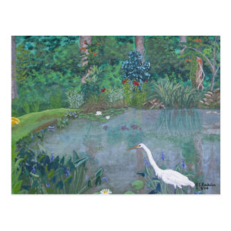 White Egret Fishing in Pond Postcard