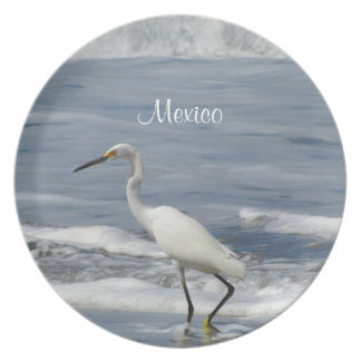 White Egret Fishing; Mexico Souvenir Dinner Plate