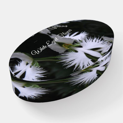 White Egret Flower [Glass Oval Paper Weight] Paperweight