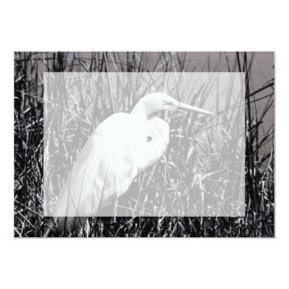 White Egret in reeds bw Card