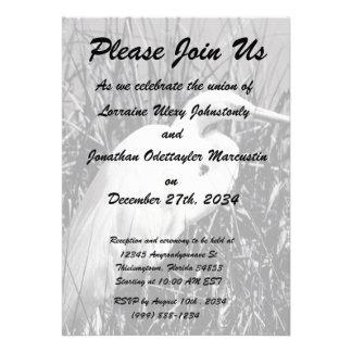 White Egret in reeds bw Invitation