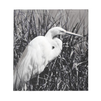 White Egret in reeds bw Notepad