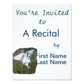 White Egret landing in marsh Card