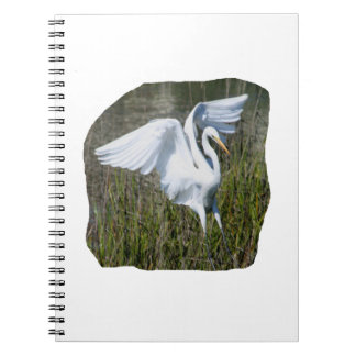 White Egret landing in marsh Notebook