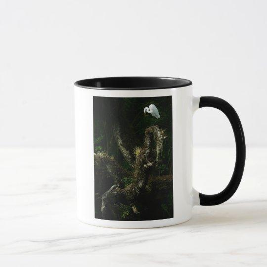 White Egret On Oak mug