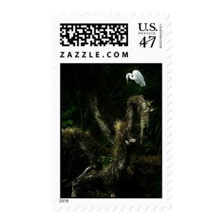 White Egret On Oak postage stamp
