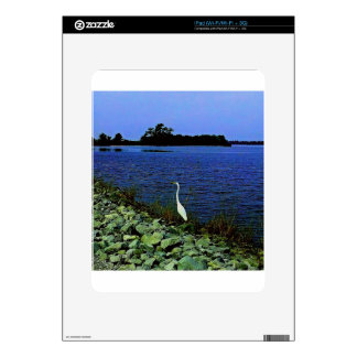 White Egret On Rocky Shore Line Decal For The iPad
