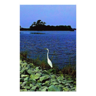 White Egret On Rocky Shore Line Stationery