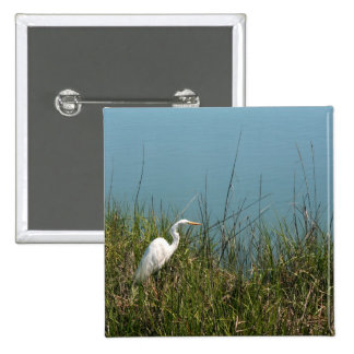 White egret standing in grass w water button
