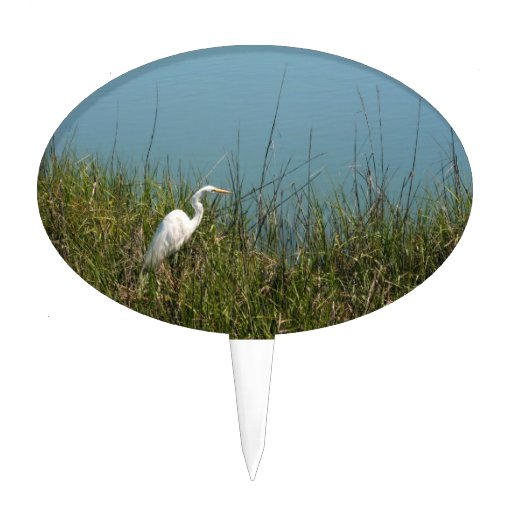 White egret standing in grass w water cake toppers