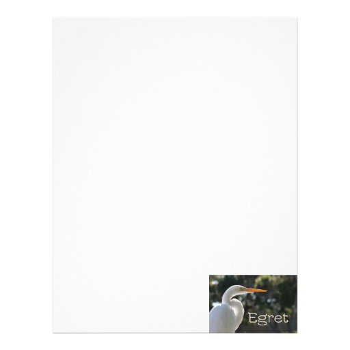 White Egret text backlit looking right against Letterhead