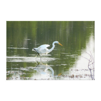 White Egret Wings Wrapped Canvas Print