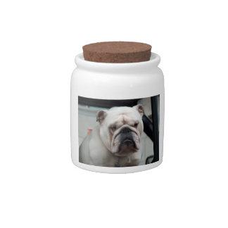 White English Bulldog Dog Treat Candy Jar