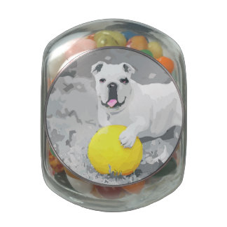 White English Bulldog Portrait With Ball Jelly Belly Candy Jar