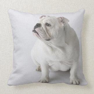 White English Bulldog Throw Pillows