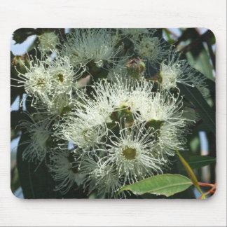 White Eucalyptus Blossom Mouse Pad