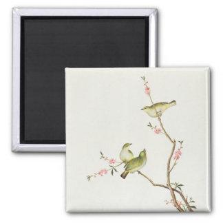 White-Eye bird, Ch'ien-lung period Magnet