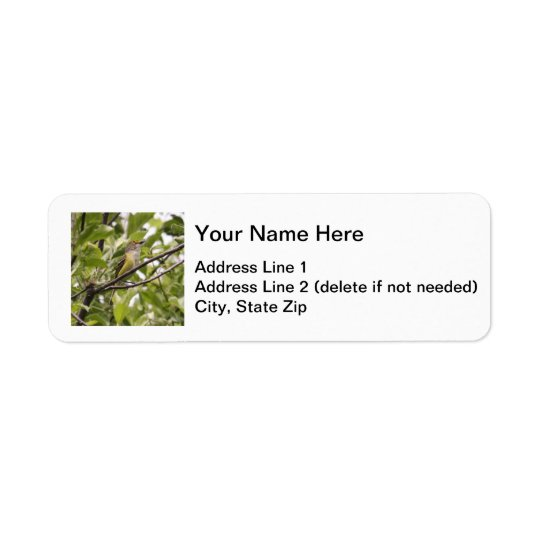 White-eyed Vireo Label