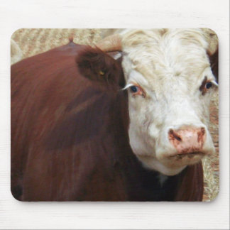 White_Face_Bull,_ Mouse Pad
