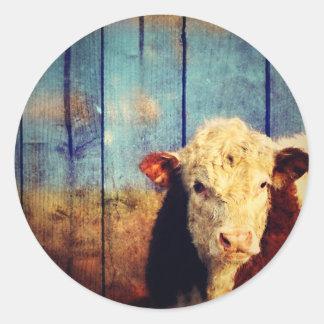 white face cow classic round sticker