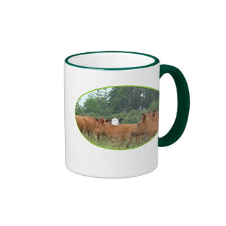 White Faced Cow with Red Cows Coffee Mugs