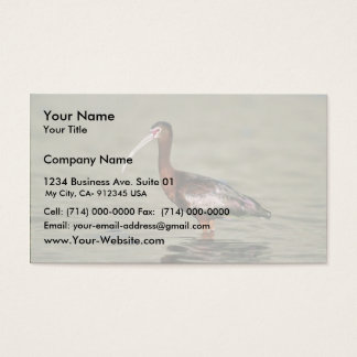 White-faced ibis business card