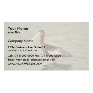 White-faced ibis business card template