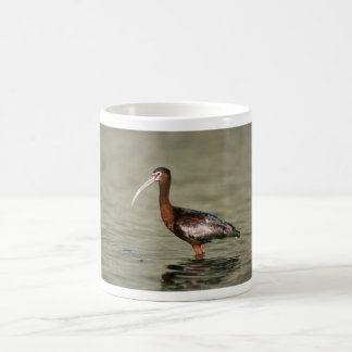 White-faced ibis coffee mugs