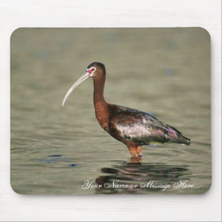 White-faced ibis mouse pad