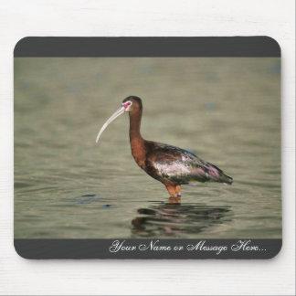 White-faced ibis mousepads