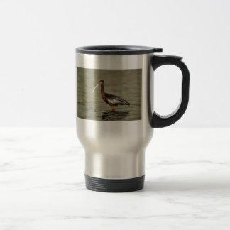 White-faced ibis mug