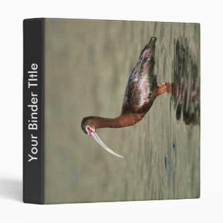 White-faced ibis vinyl binders