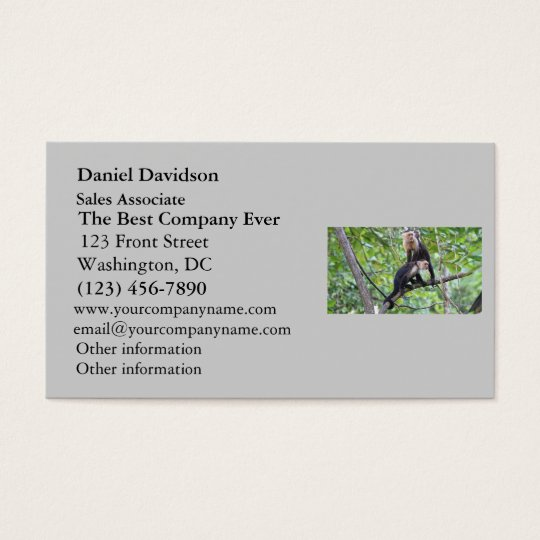 White-Faced Monkey Family Photo Business Card