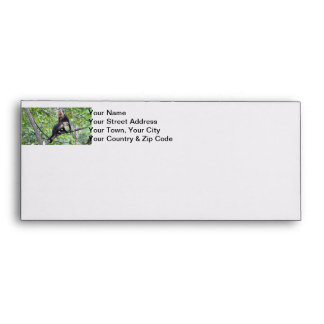White-Faced Monkey Family Photo Envelope