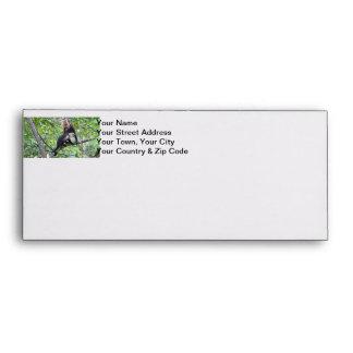 White-Faced Monkey Family Photo Envelope