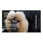 White Faced Saki Monkey Business Cards