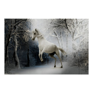 White Fantasy Horse Poster