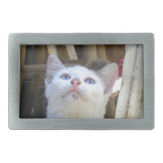 White Farm Cat Blue Eyes Belt Buckle