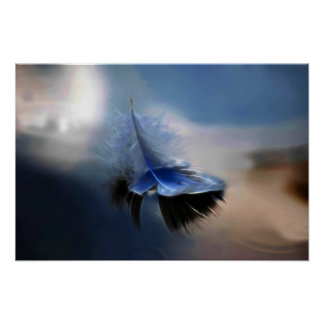 White feather sailing poster