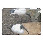 White Feathers Case For The iPad Mini