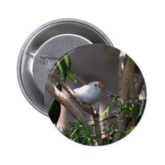 White Finch 2 Inch Round Button