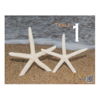 White Finger Starfish Table Number Postcard