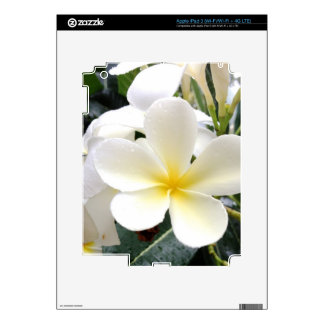 White Floral iPad 3 Decals