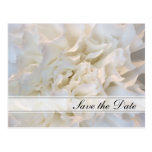 White Floral Quinceañera Save the Date Postcard