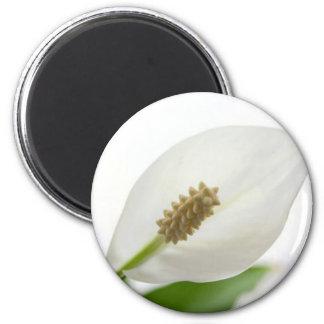 white flower 2 inch round magnet