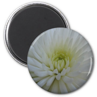 White Flower 2 Refrigerator Magnets