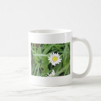 White flower amongst the green coffee mug
